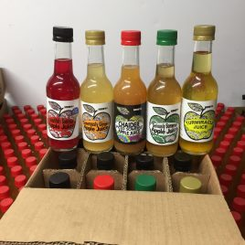mixed box of 12 x 250ml apple juice